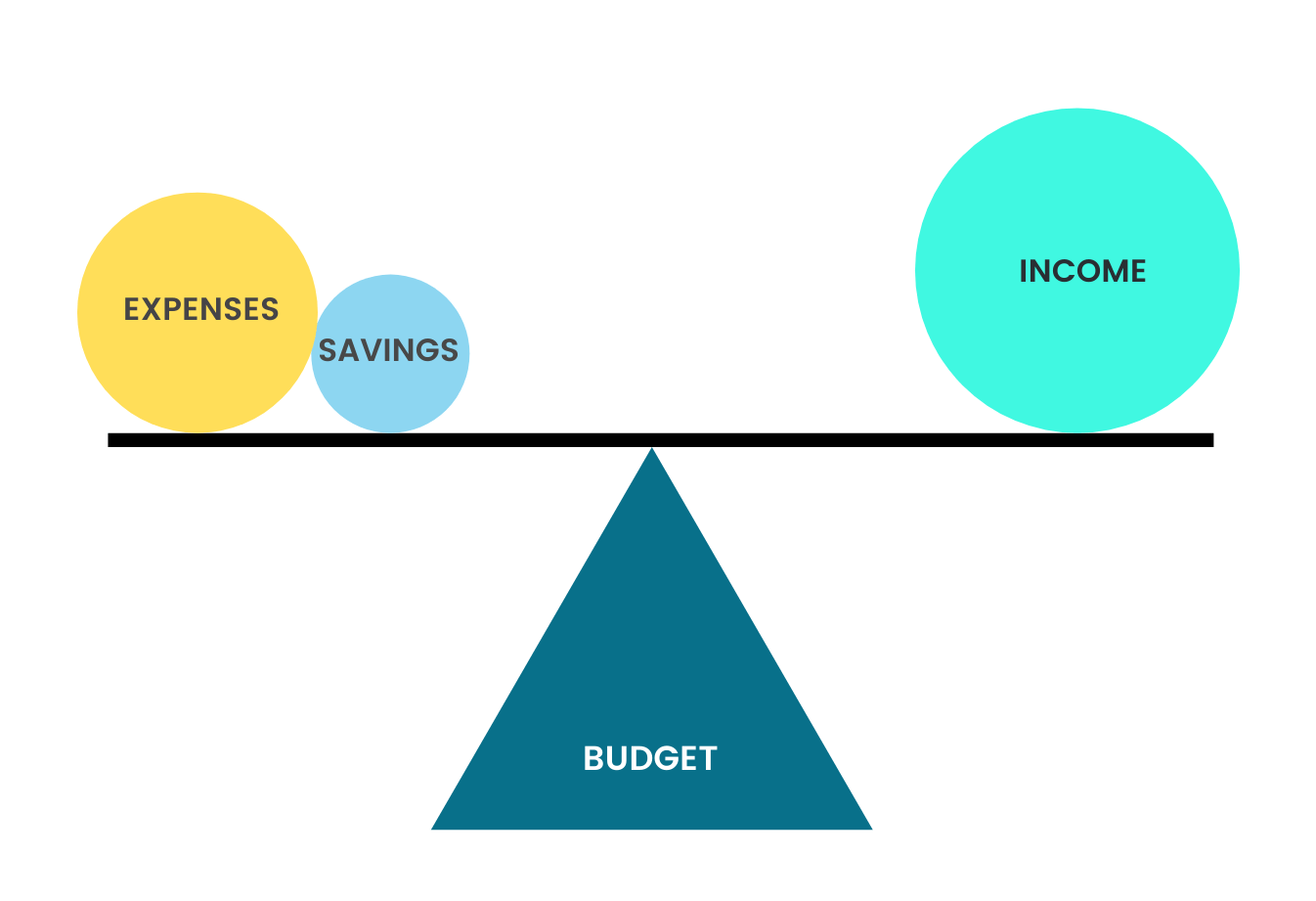 What is budget