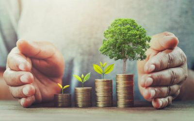 How To Start Investing? A Complete Guide